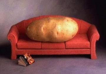 d801b-couch_potato_2047052